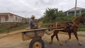 Cuba - Horse Cart