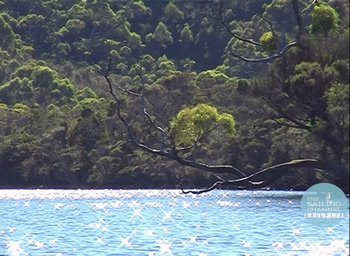 Sail Australia with Jack & Jude: Voyages of Banyandah