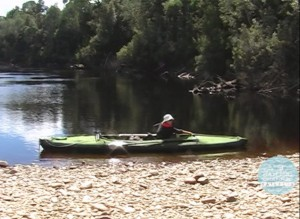 Tasmania 2 - Green Machine