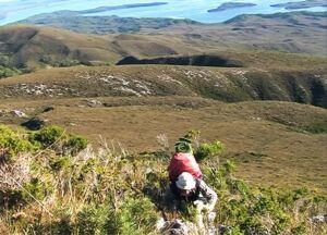Tasmania - Climbing Mt. Sorell