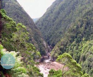 Tasmania1 - Gorge