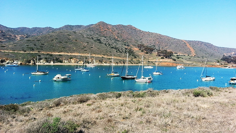 Sailing Destinations Cat Harbor, Santa Catalina Island, California
